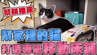 【Joeman】超可愛~幫家裡的貓打造專屬移動床鋪!