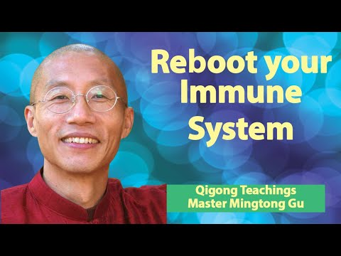 How to Reboot Your Immune System Through Wisdom Healing Qigong