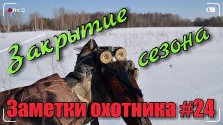 Охота. Заметки охотника #24. Закрытие зимнего сезона 2016-2017г.г. Hunting in russia