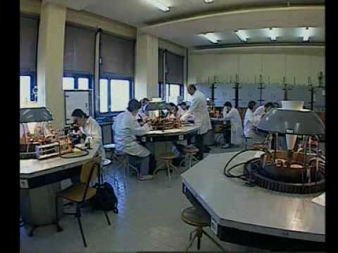 Faculty of Food technology and Biotechnology