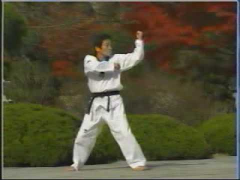 taekwondo poomse 12 Pyongwon