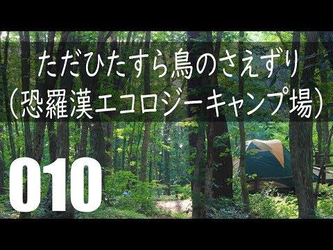 真夏なのに涼しい! 恐羅漢エコロジーキャンプ場