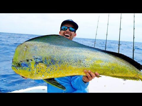 Monster Dolphin in the Florida Keys, Catch N Cook - 4K