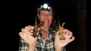 Fishing for yabbies with Jodie the spider girl