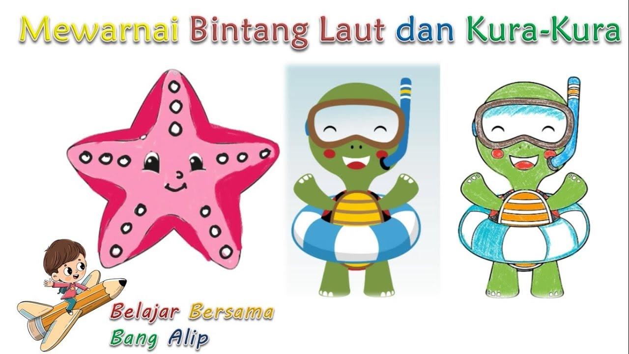 Belajar Mewarnai Bintang Laut Dan Kura Kura Kartun Anak