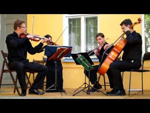 Моцарт Вольфганг Амадей - Дивертисмент для струнного квартета ре мажор