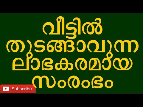 low-cost-and-high-profit-small-business-from-home-roasted-cashewnut-kerala-malayalam