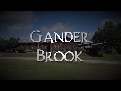 Gander Brook (2016) - A Documentary by Linus Obenhaus