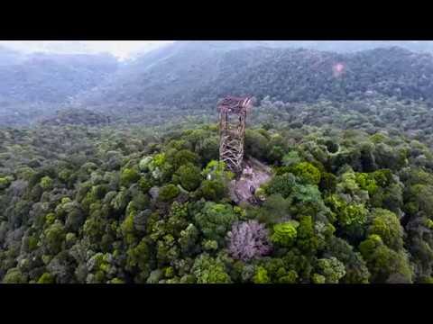 Tower 1 Gunung jantan tanjung balai karimun - jasa Drone tanjung balai Karimun