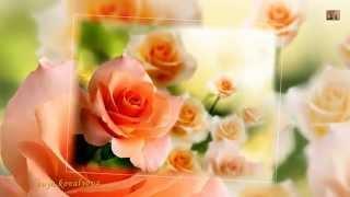 Цветы для Тебя! Поздравление. Самая красивая музыка и самые красивые цветы!(«Цветы для тебя» – это музыкальное анимационное видео поздравление с Днём Рождения, поздравление с Днём..., 2015-01-19T14:09:37.000Z)