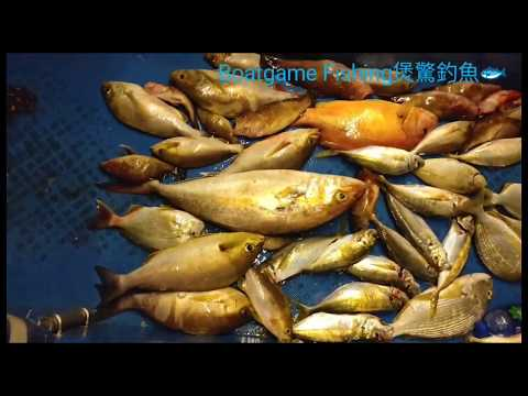 Hong Kong Offshore Fishing - Slow Jigging & Bait Cage
