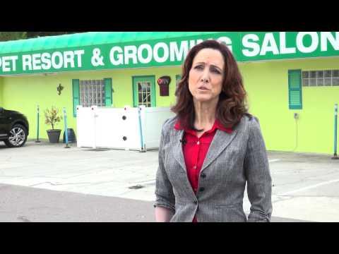 Big Sur Technologies - Testimonial - Dr. Katherine Murphy