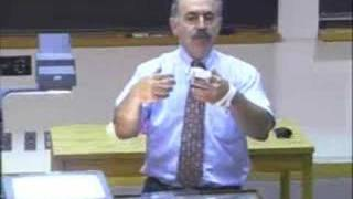 Lec 4 | MIT 7.012 Introduction to Biology, Fall 2004