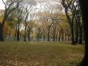 John Coltrane -  Central Park West