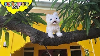 KITTEN STUCK in the tree! - Skyheart and Mimi saves the kitty cat toys for kids meow