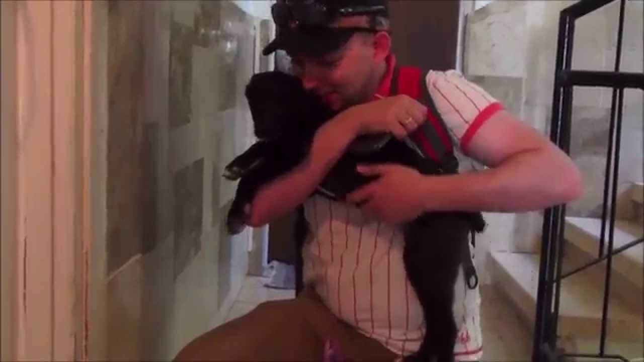 жена встречает мужа после долгой разлуки видео - 4