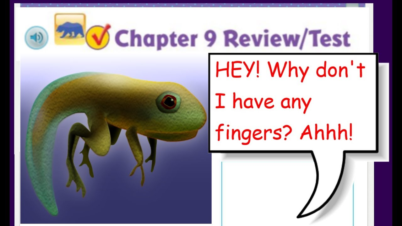 Go Math 5th Grade Chapter 9 Review Part 1 *UPDATED* - YouTube