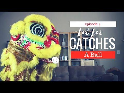 Lion Dance Pet - Teaching Lai Lai How to Catch a Ball