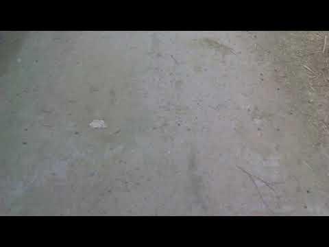 Fake film of RAAZ REBOOT 3