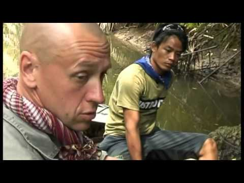 snake reptile jungle indonesia 2 Documentary Lengh AMAZING Documentary