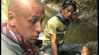 snake reptile jungle indonesia 2 Documentary Lengh AMAZING Documentary