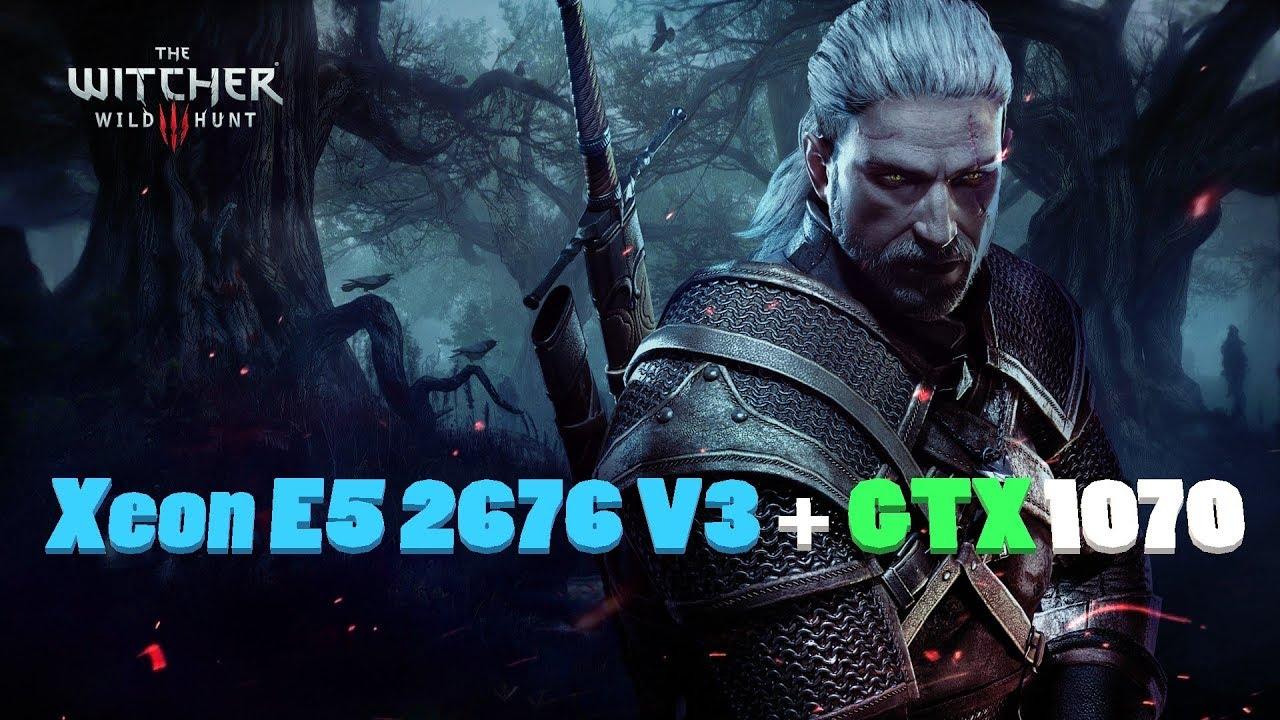 The Witcher 3 Xeon E5 2676 V3 + GTX 1070 Asus Strixx