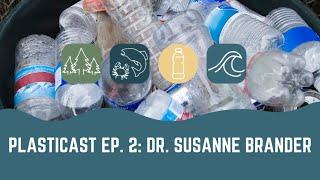 PLASTICAST: Ep2 - Dr. Susanne Brander