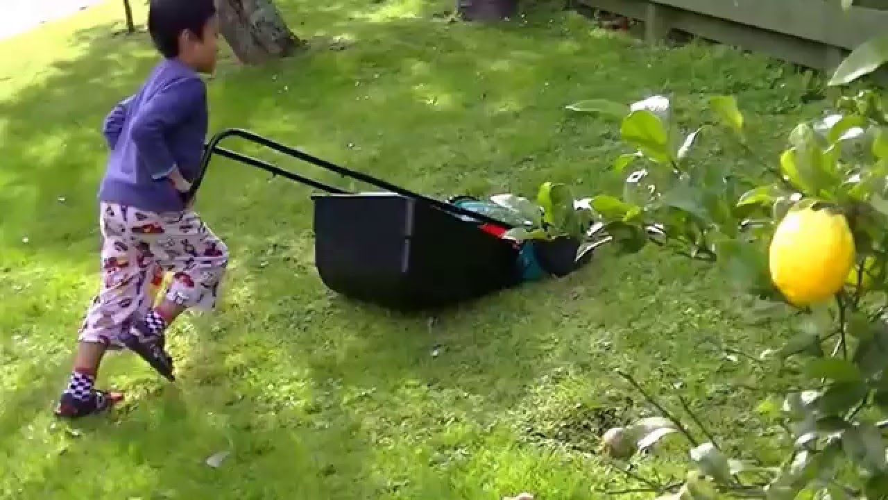 5 Year Old Doing The Lawns Kids Mowing Lawn Diy Bosch Mower You