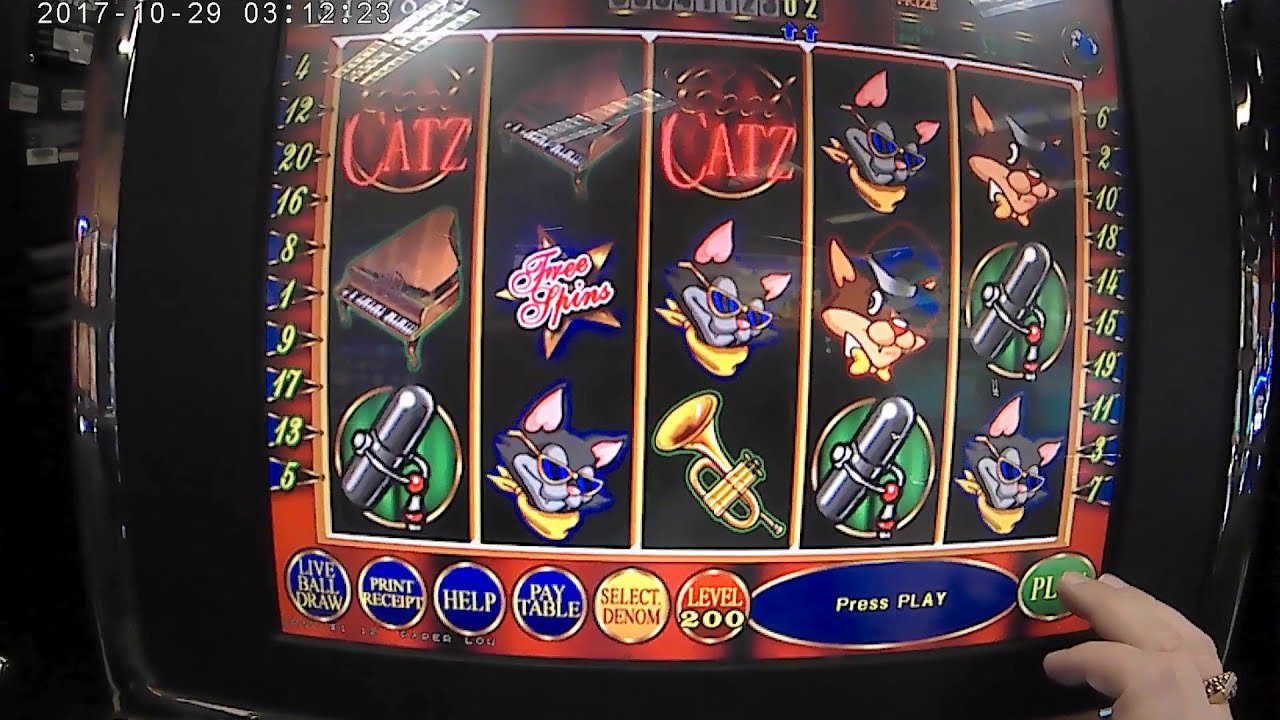 Play cool catz slot machine directions to san manual casino