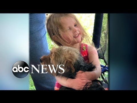 Good News: Missing Toddler Found With Loyal Dog By Her Side