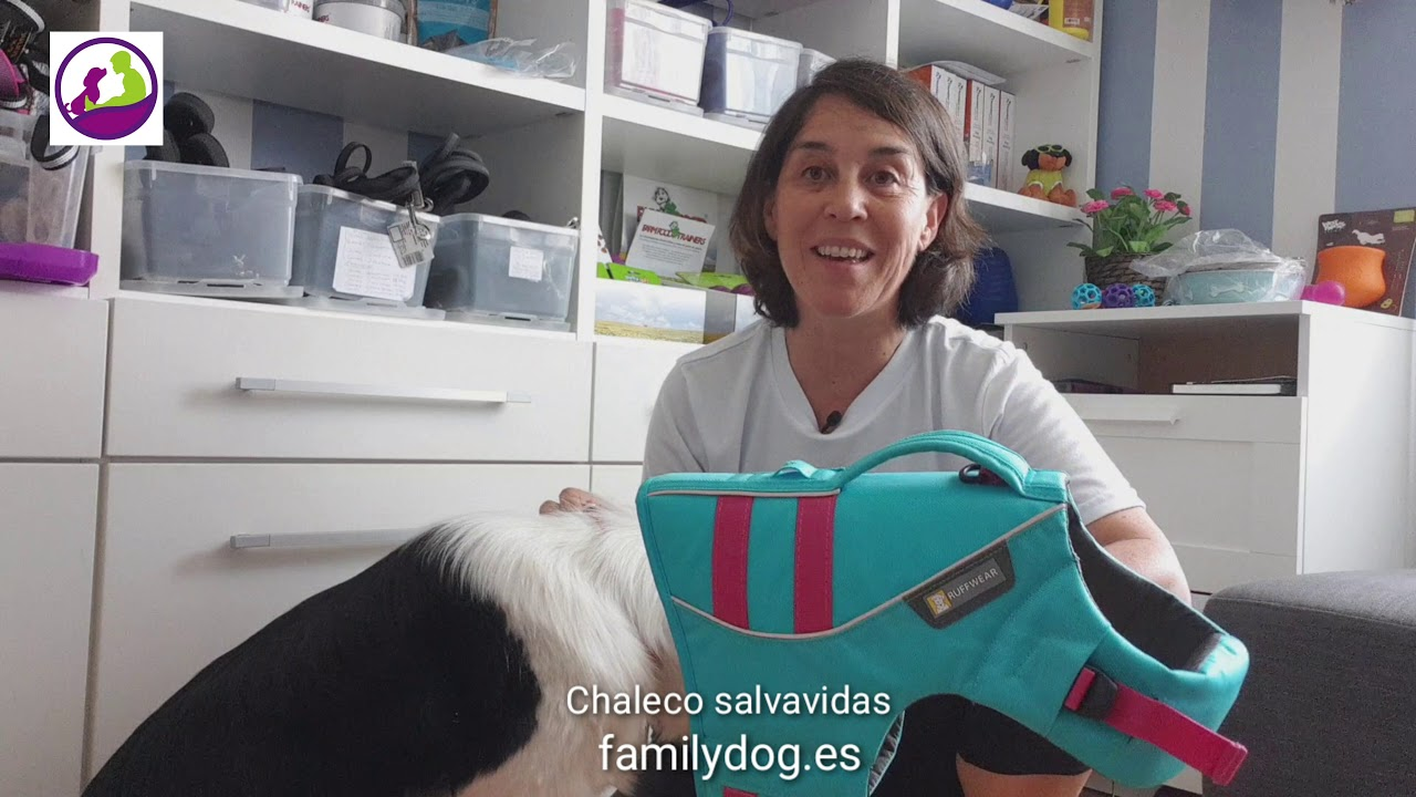 Rehomy Nataci/ón Chaqueta para Mascotas Chaleco Salvavidas Impermeable Chaleco Salvavidas para Perros Mascota Chaleco