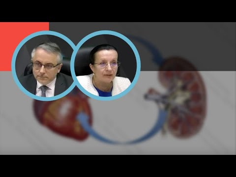 Новикова Т.Н., Земченков А.Ю.: Хроническая болезнь почек и сердечно-сосудистый риск