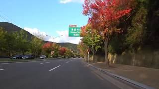 [5][구아뜨리에] 소니액션캠 가을빛을 담다. Sony…
