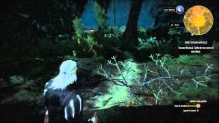 THE WITCHER 3 WILD HUNT Gameplay PC PORTABLE GAMER ROG scene sex