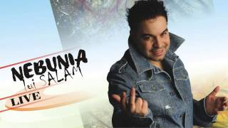 FLORIN SALAM - NEBUNIA LUI SALAM 2013 (LIVE NUNTA HOZO) , manele noi, salam 2015, manele l ...