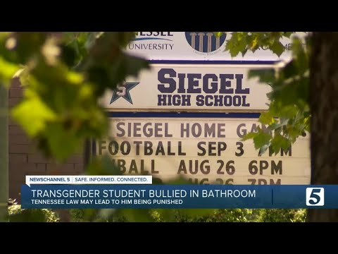 Download Transgender student bullied in bathroom may be punished before boys who harassed him