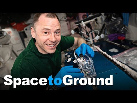 Space to Ground: The ABC's of DNA: 05/24/2019