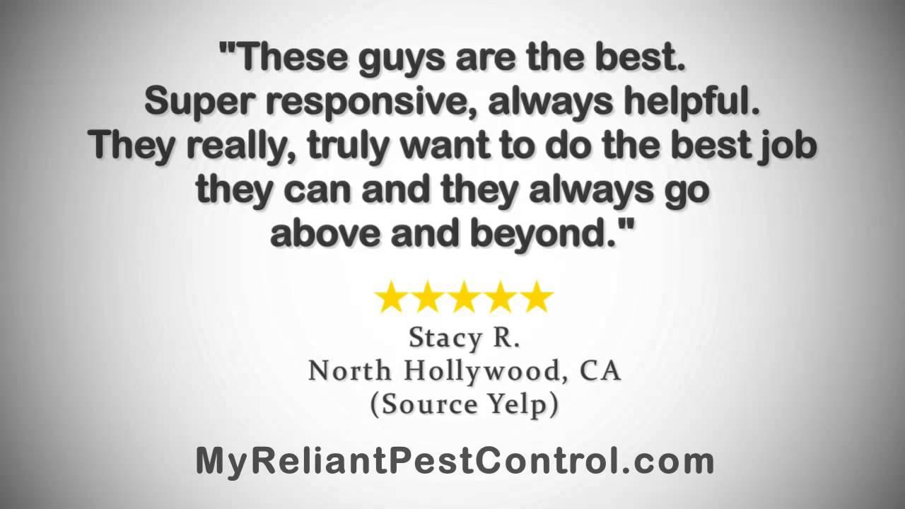 Reliant Pest Control Reviews 818 850 0198 Northridge Ca