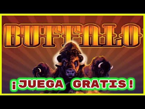 tragamonedas-buffalo-gratis-!►-juegos-de-casino-online