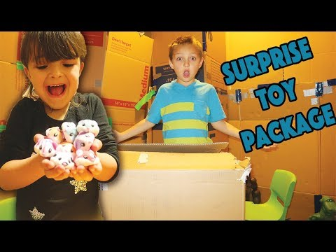 SURPRISE TOY PACKAGE delivered to our BOX FORT!!!