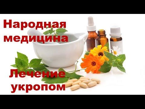 Лечение укропом
