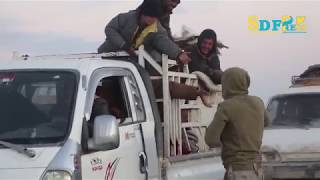 new-groups-of-civilians-liberated-from-daeshs-areas