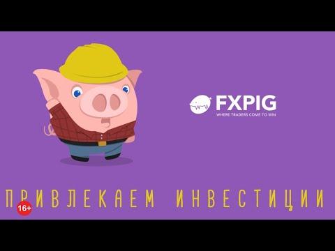 Офшорный FXPIG воспользуется