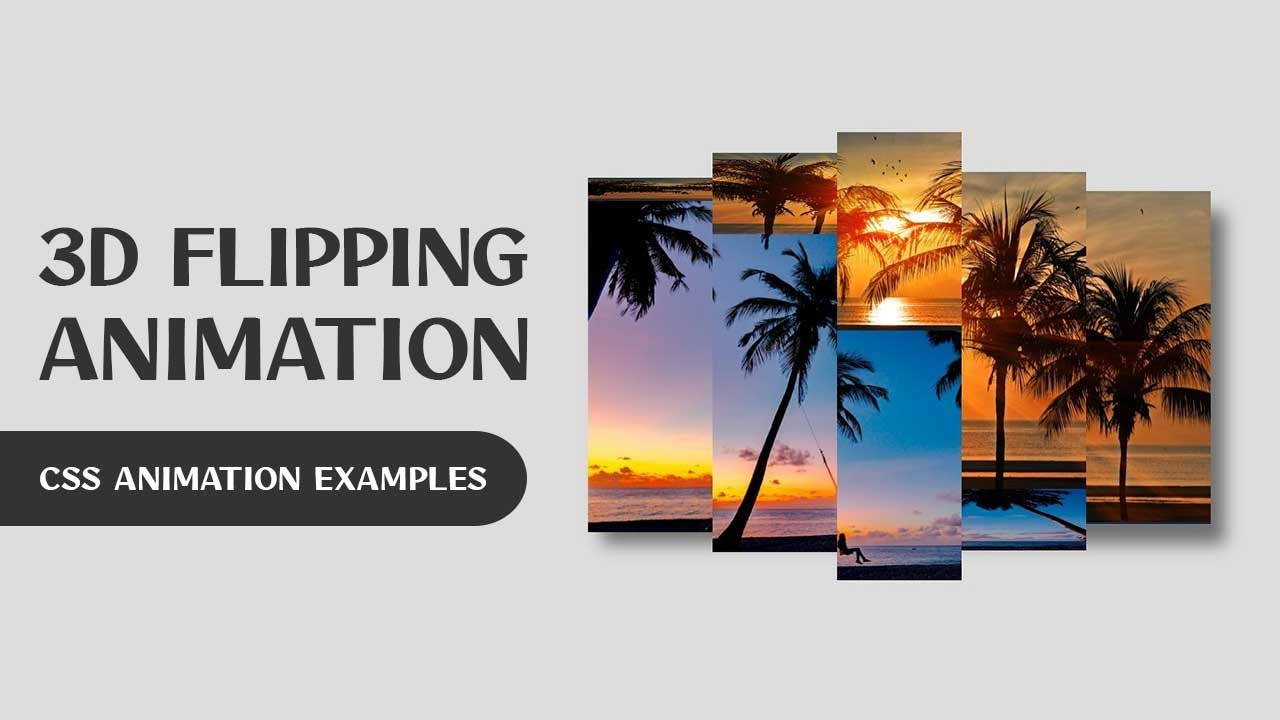 CSS 3D Flip Hover Animation   CSS Animation Examples