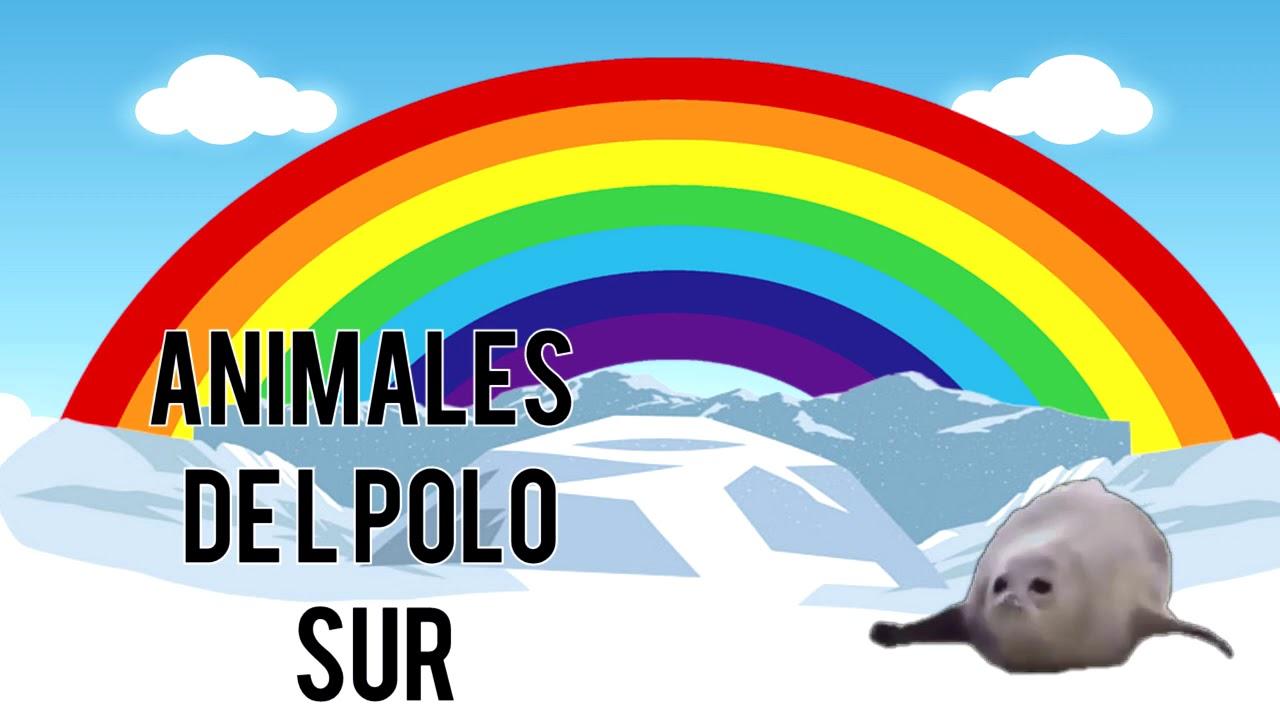 Animales del Polo Norte y del Polo sur para ninos Sonidos reales
