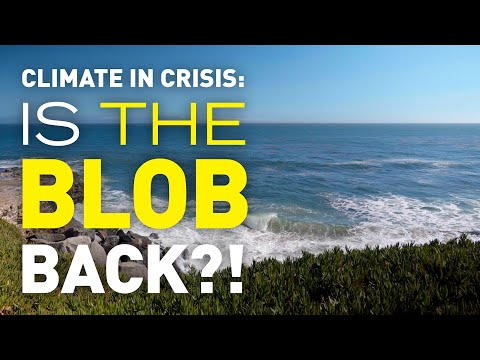 A Changing Ocean: Warm Pacific Temperatures Could Signal a Return of 'The Blob'