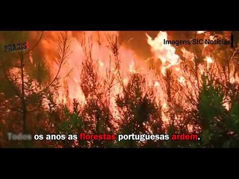 Incêndio em Pedrógão Grande
