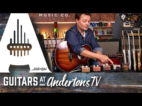 LR Baggs Align Series Pedals With Pete