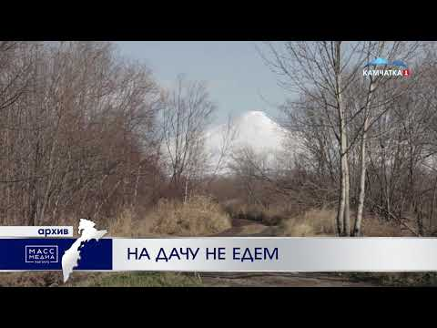 На дачу не едем   Новости сегодня   Происшествия   Масс Медиа