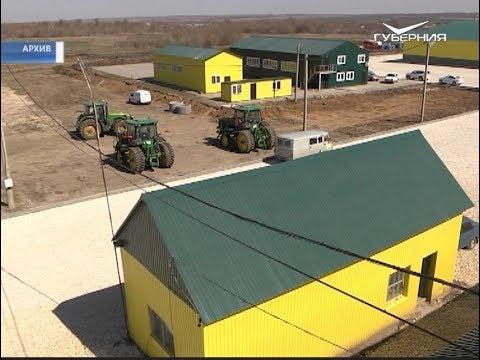 В Самарской области создали уникальную цифровую систему мониторинга и прогнозирования урожайности